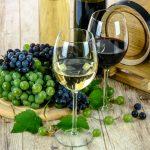 Bien choisir son vin : voici 5 astuces ultimes pour y arriver
